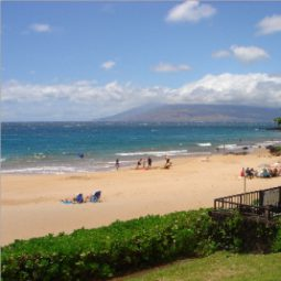 Maui Sun Club