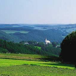 Forest Murmurs Travel Club